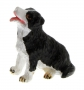 AT Collections 32116 - Border Collie links