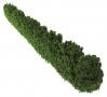 Brushwood TOYS BT2090 - Wilde Hecke vorne