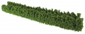 Brushwood TOYS BT2090 - Wilde Hecke