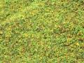 Brushwood TOYS BT2030 - Fein Silage nah