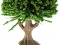 Brushwood- TOYS 2065 - Bäume Set Eiche Stamm