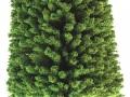 Brushwood- TOYS 2065 - Bäume Set Eiche klein