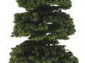 Brushwood- TOYS 2065 - Bäume Set Fichte