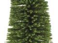 Brushwood- TOYS 2065 - Bäume Set Tanne