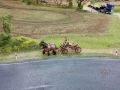 Farmworld Fehmarn - Pferdekutsche