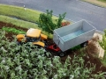 Farmworld Fehmarn - Traktor im Maisfeld