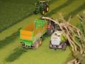 Farmworld Fehmarn Okt. 2015 - Grassernte mit Feldhäcksler Claas