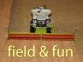 Field and fun