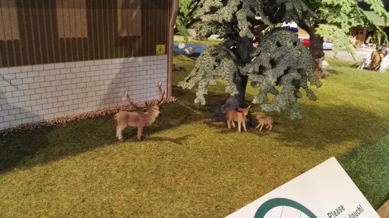 Field and Fun Ostern 2016 - Rehkitz
