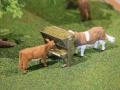 Field&Fun Sierhagen - Kühe