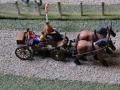 Field&Fun Sierhagen - Pferdekutsche