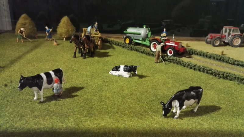 field&fun - Kuhweide