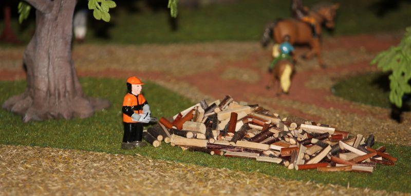 field&fun - Waldarbeiter mit Holzstapel