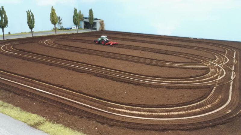 Farmworld Fehmarn Juni 2016 - Feld