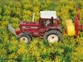 Farmworld Fehmarn Juni 2016 - Maisfeld wird gedüngt