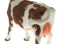 Siku 2490 - Zwei Kühe braun hinten