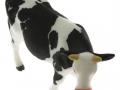 Siku 2490 - Zwei Kühe schwarz oben