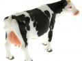 Siku 2490 - Zwei Kühe schwarz rechts