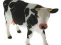 Siku 2490 - Zwei Kühe schwarz