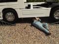 Mechaniker liegt unter LKW