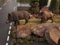 Wildschwein auf Straße
