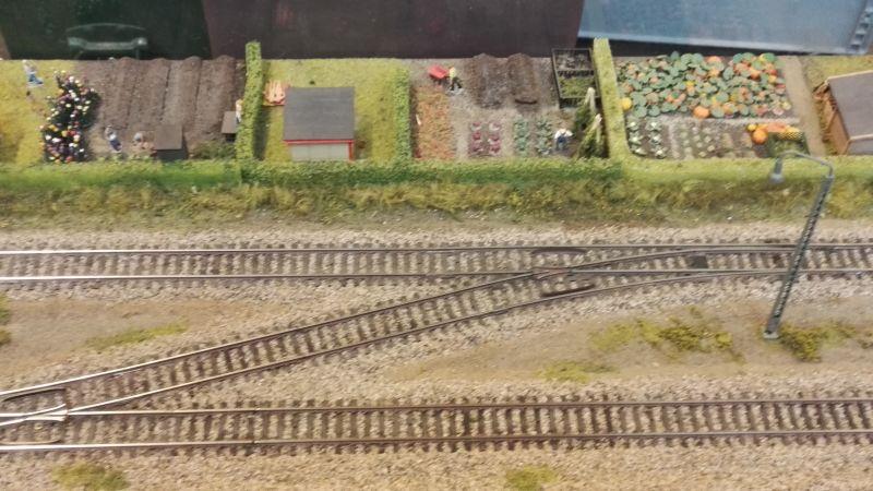 Spielidee Rostock 2016 - Schienen und Gemüsegarten