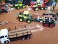 Traktorado 2015 - LKW mit Baumstämmen