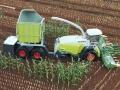 Traktorado 2016 in Husum - 24