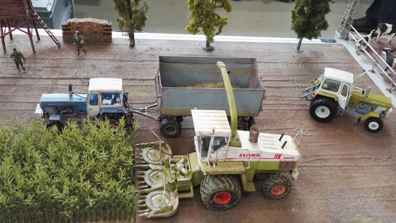 Traktorado 2016 in Husum - 93