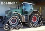Hof-Mohr